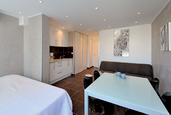 Brown libertine studio flat rental